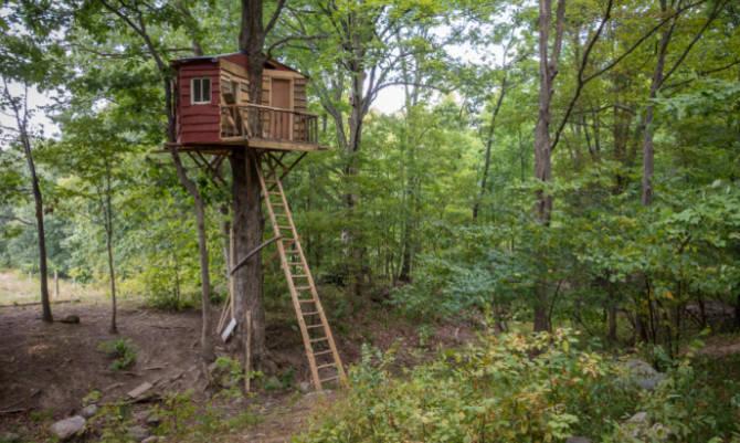 Abitare tra le fronde la comunit arboricola piemontese for Case moderne nei boschi