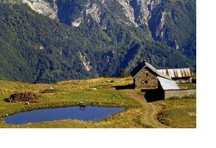 Montagna. Sport e relax sulle Dolomiti Friulane