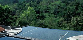 Losari Resort