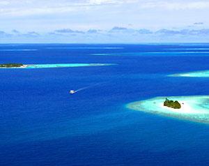 W Maldive