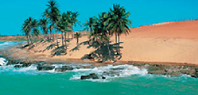 Viaggi. Brasile vista Oceano