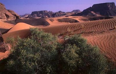 Fezzan Libia