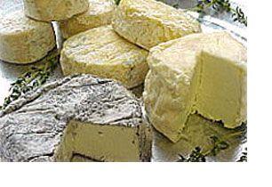 Gourmet. Mostra del formaggio a Perugia