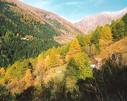 Adamello, montagna d'estate