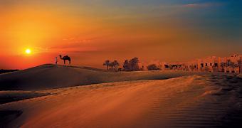 Mille e una notte nel deserto