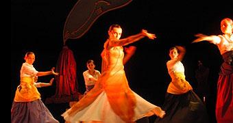 Flamenco El Mirabras