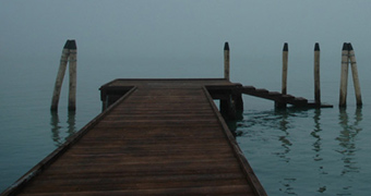 Quale Venezia/Which Venice