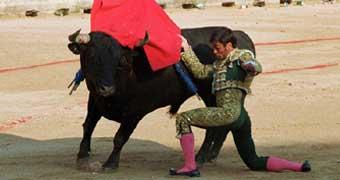 Pamplona Ole'