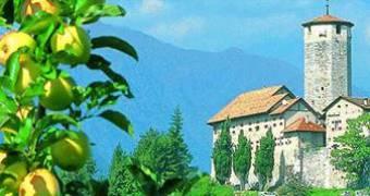 Mele Trentino