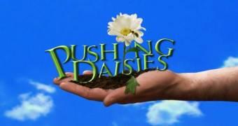 """Pushing Daisies"" e l'amor cortese."