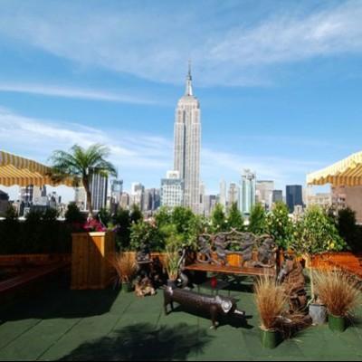New York 230 Fifth Rooftop Garden