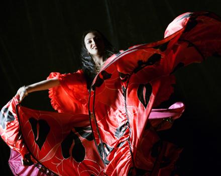 Anche Barcellona ama il flamenco