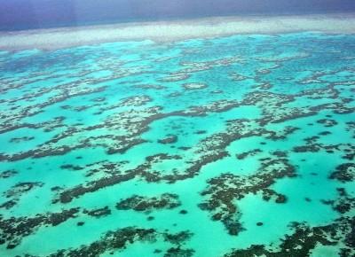 Australia Grande barriera corallina