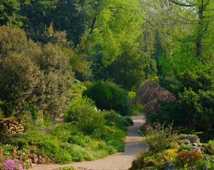 Jardin des plantes: molto più di un orto botanico!