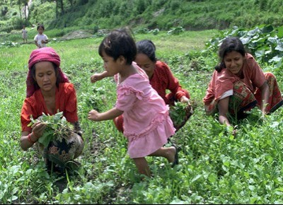 Nepal eco-solidale