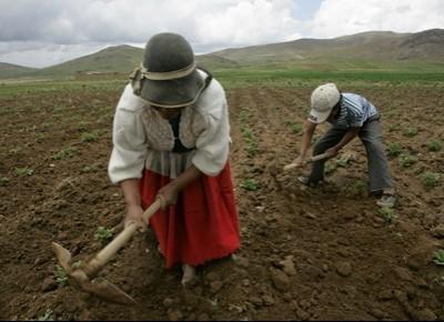 Bolivia eco-solidale