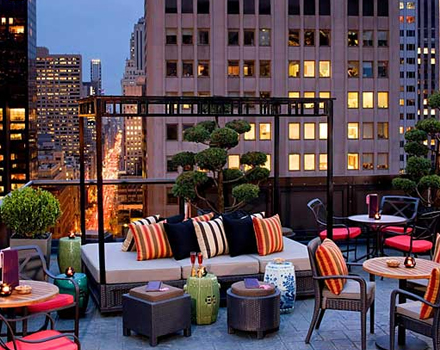 New York roof garden