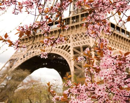 Magiche novità nel cuore di Parigi