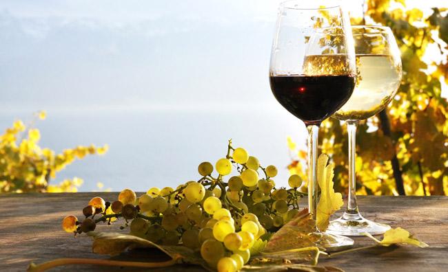 Bere bio a Parigi. Anche il vino si fa verde