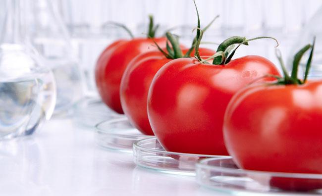 La cucina molecolare sposa il food design