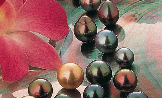 Le perle della Polinesia