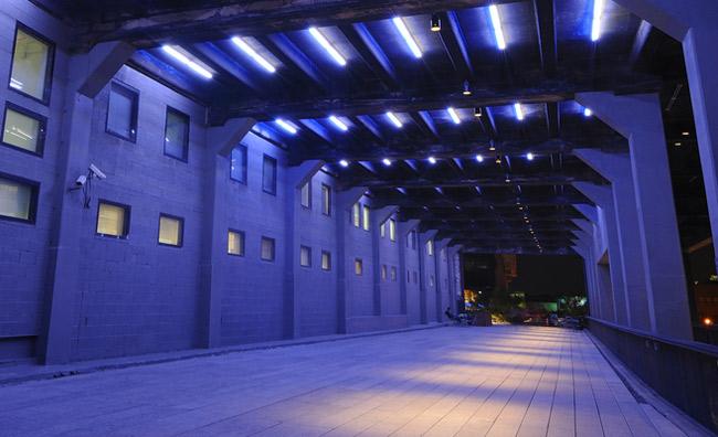 Nightilife ed eventi nella New York 'sospesa'