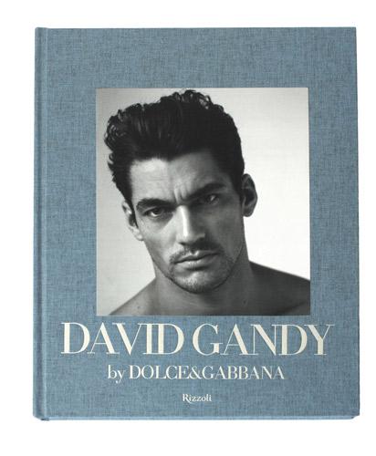 David Gandy il libro