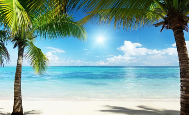 Caraibi spiaggia con palme Repubblica Dominicana