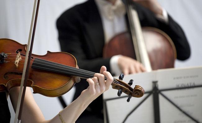 Orchestra - violino