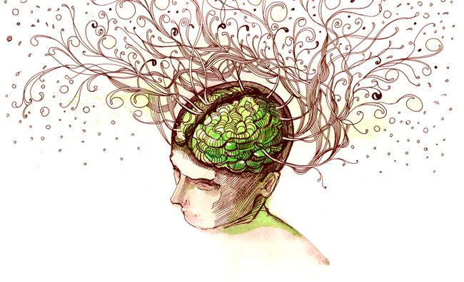 Cervello disegno