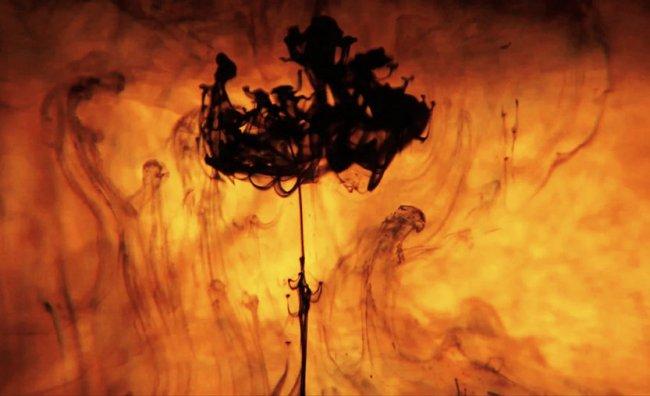 """L'Eternità"": suggestioni visive di Arash Radpour"