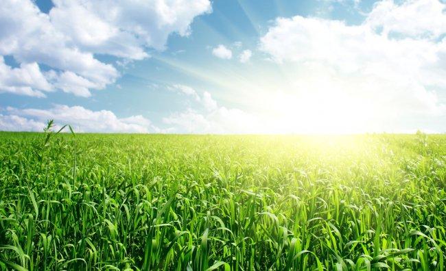 Mobilitiamo il Pianeta! The Earth Day