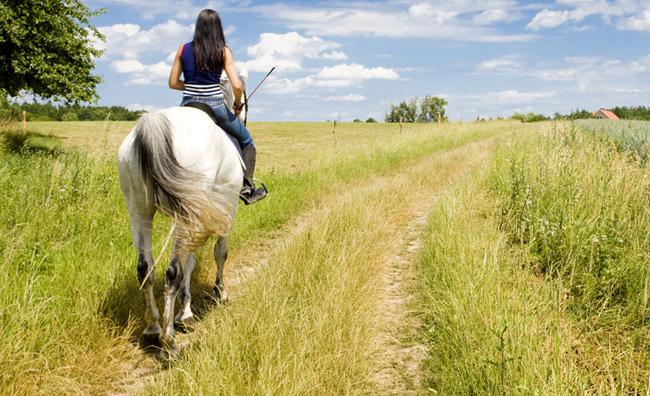 Ferragosto a cavallo