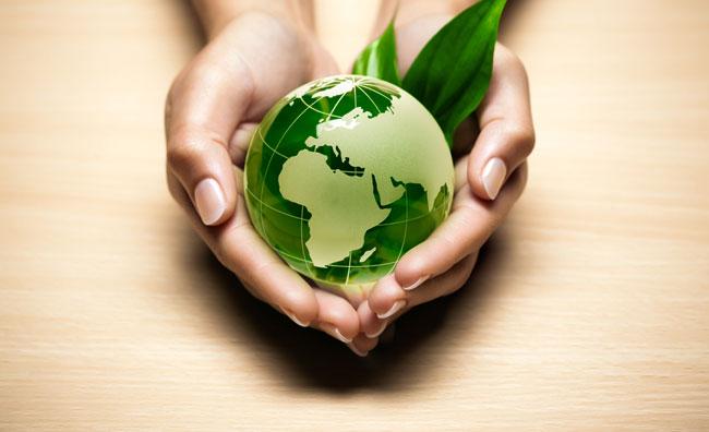 Mondo ecologia