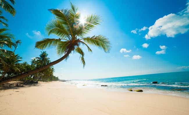 Gennaio al caldo: in vacanza fuori stagione