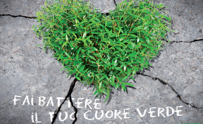 Verde libera Tutti! Il gardening è collettivo