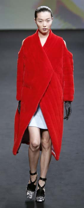Pelliccia Christian Dior