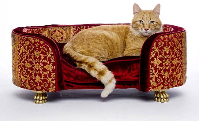 Design per animali: che lusso!