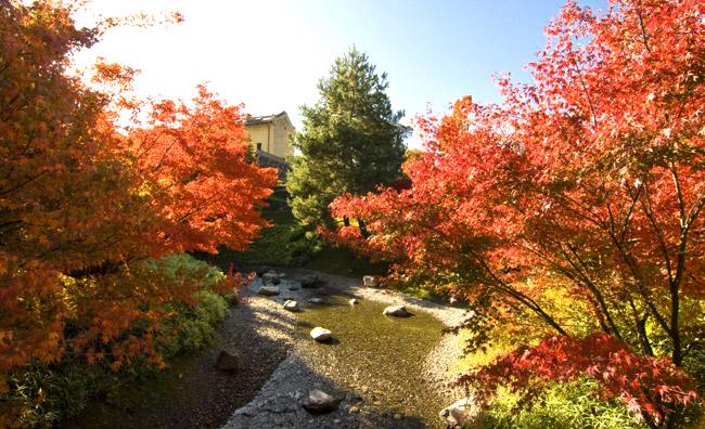Foliage, per un weekend di puro romanticismo