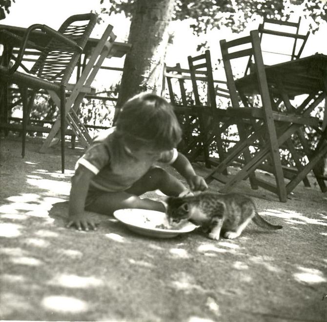 1967 - Il cibo e gli affetti straordinari