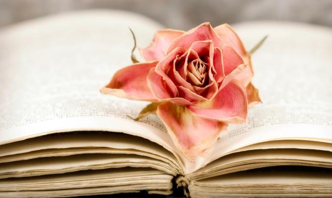 L'amore in versi: i libri di poesie
