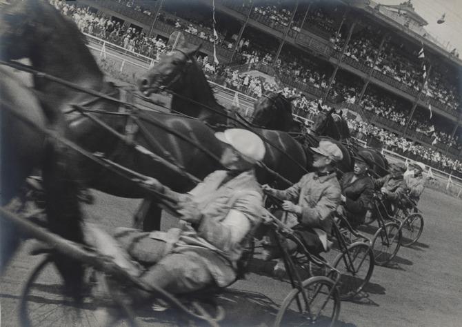 Corsa con i cavalli