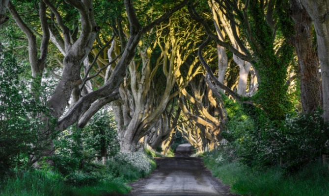 Sentiero Irlanda del Nord