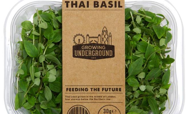A Londra il primo orto sotterraneo