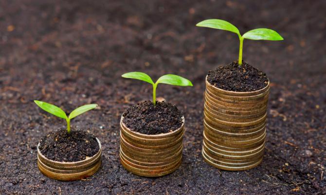 soldi, eco-friendly, natura, germoglio, terra