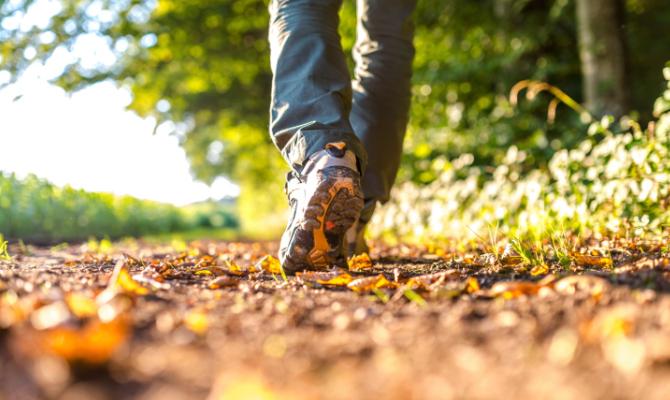 Elogio del cammino: il viaggio a piedi