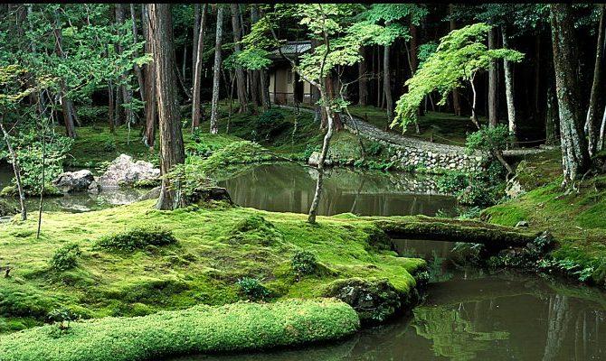 Saiho-ji, il tempio delle fragranze