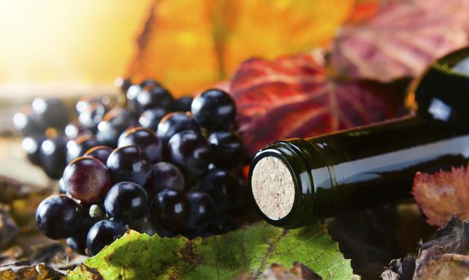 Vino rosso bio-vegan