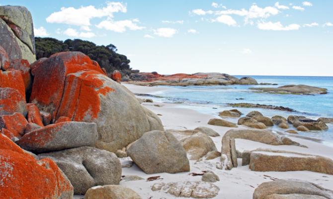 Spiaggia Tasmania