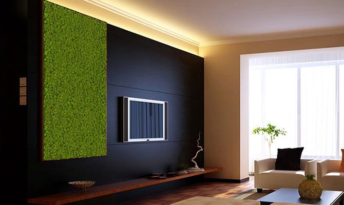pareti rivestite da muschio stabilizzato, design